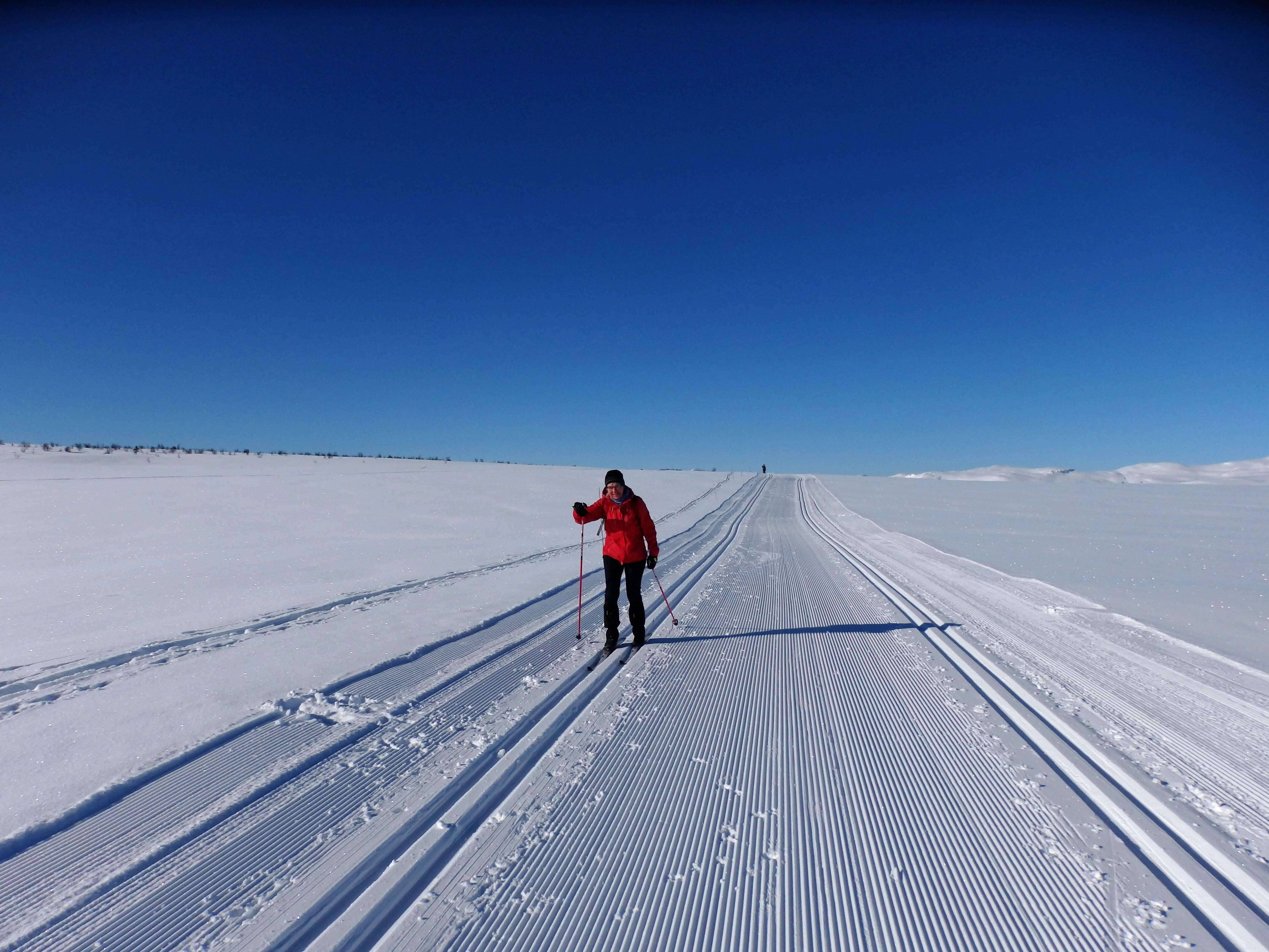 Langlauf In Norwegen